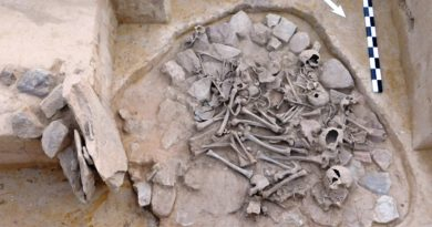 Badania na starożytnym cmentarzysku (zdjęcia)