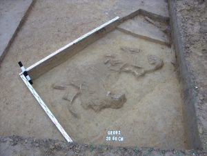 med_badania_archeologiczne_na_terenie_sadowia_89295