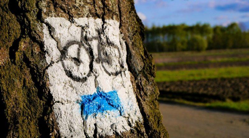 bike-2970293_960_720