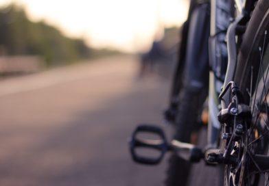 Rowerzysta na pasie zieleni