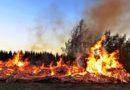 Lasy płoną. Odpady płoną. Nawet bagna w Biebrzańskim Parku Narodowym trawi ogień