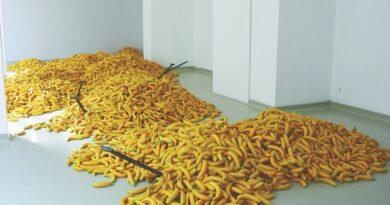Biuro Wystaw Artystycznych rozpoczyna rok mocnym akcentem